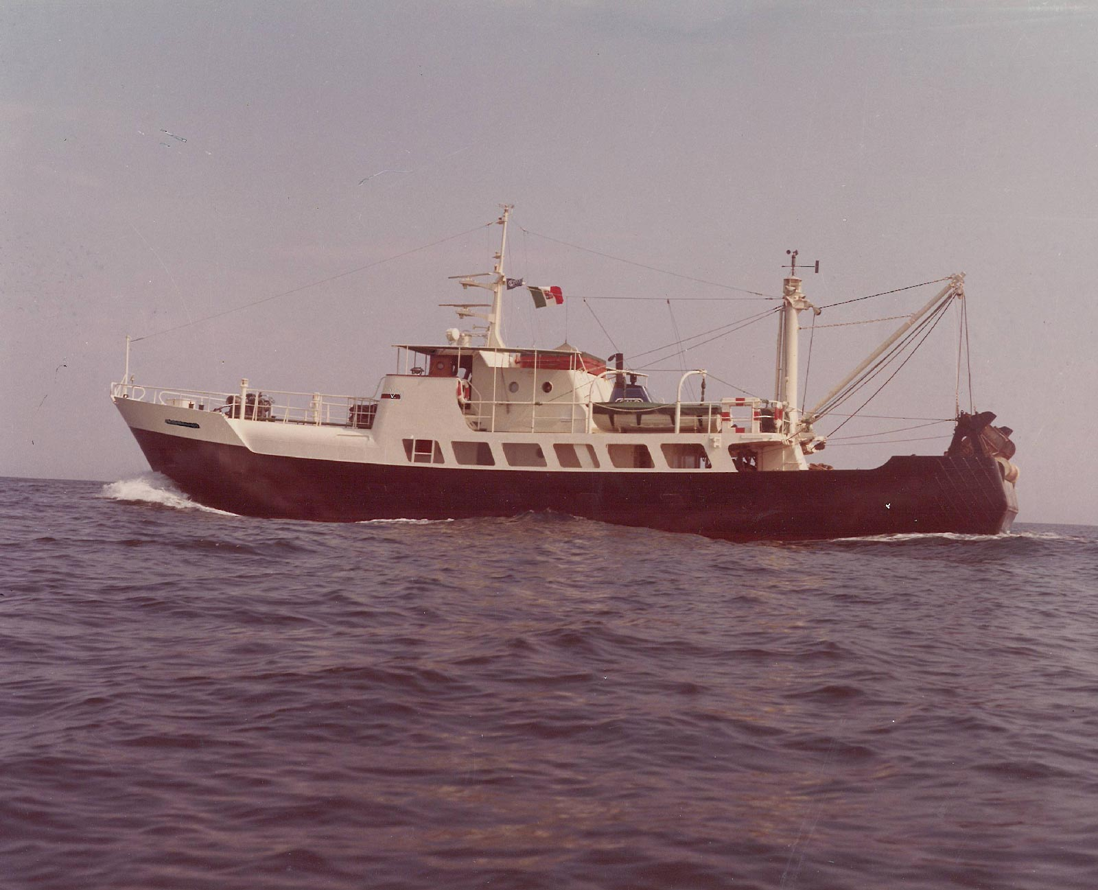 hausmann 1990