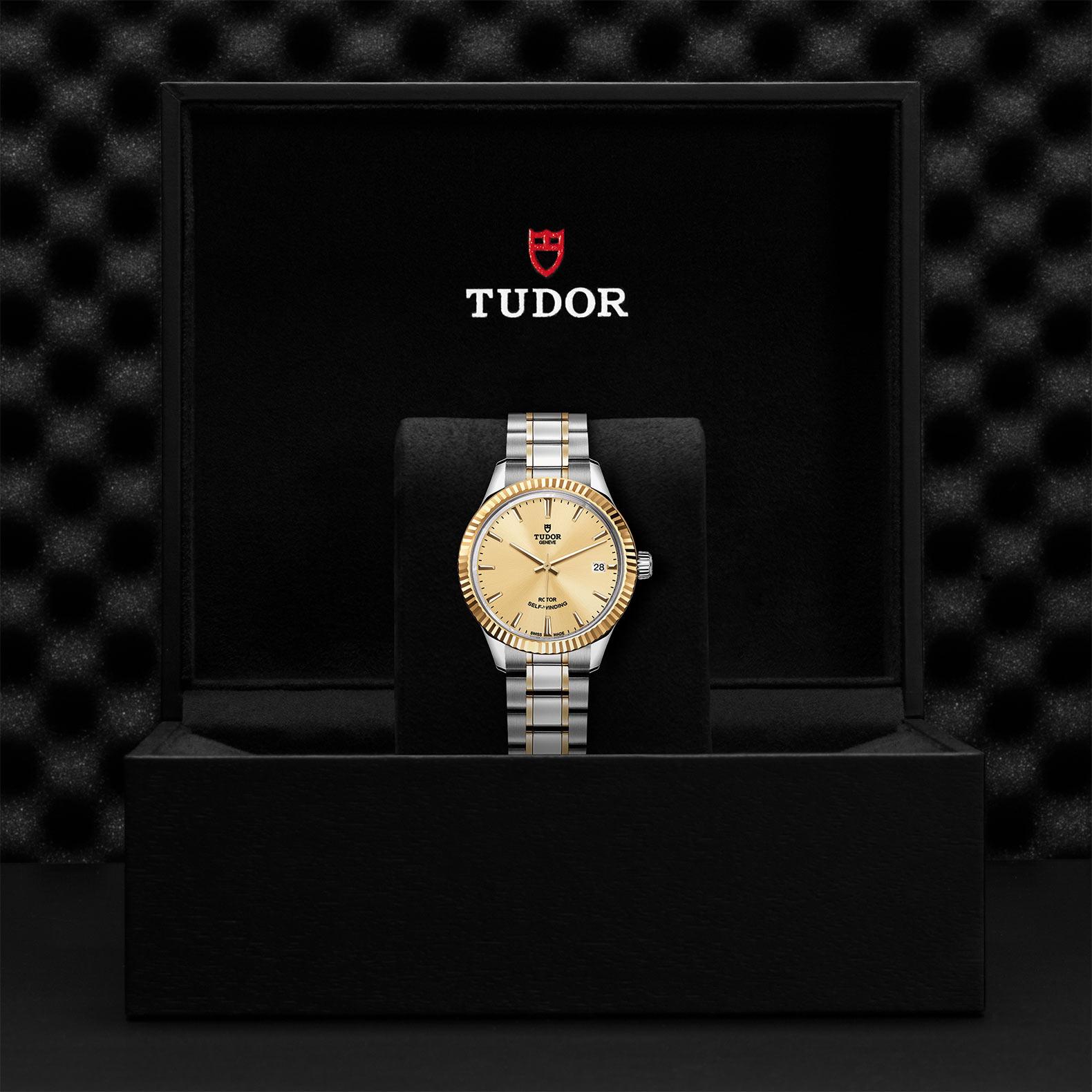 TUDOR Style - M12313-0001