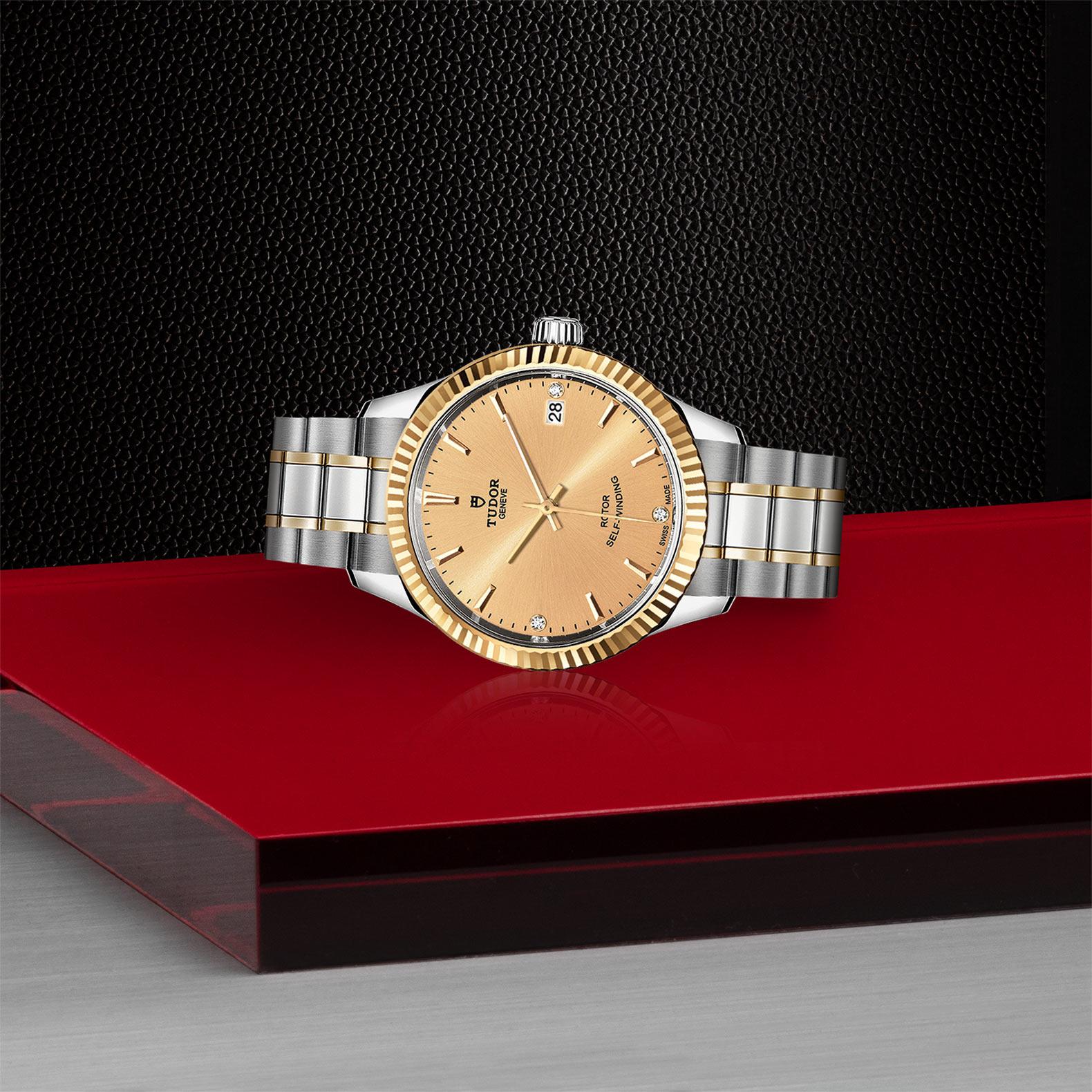 TUDOR Style - M12313-0007