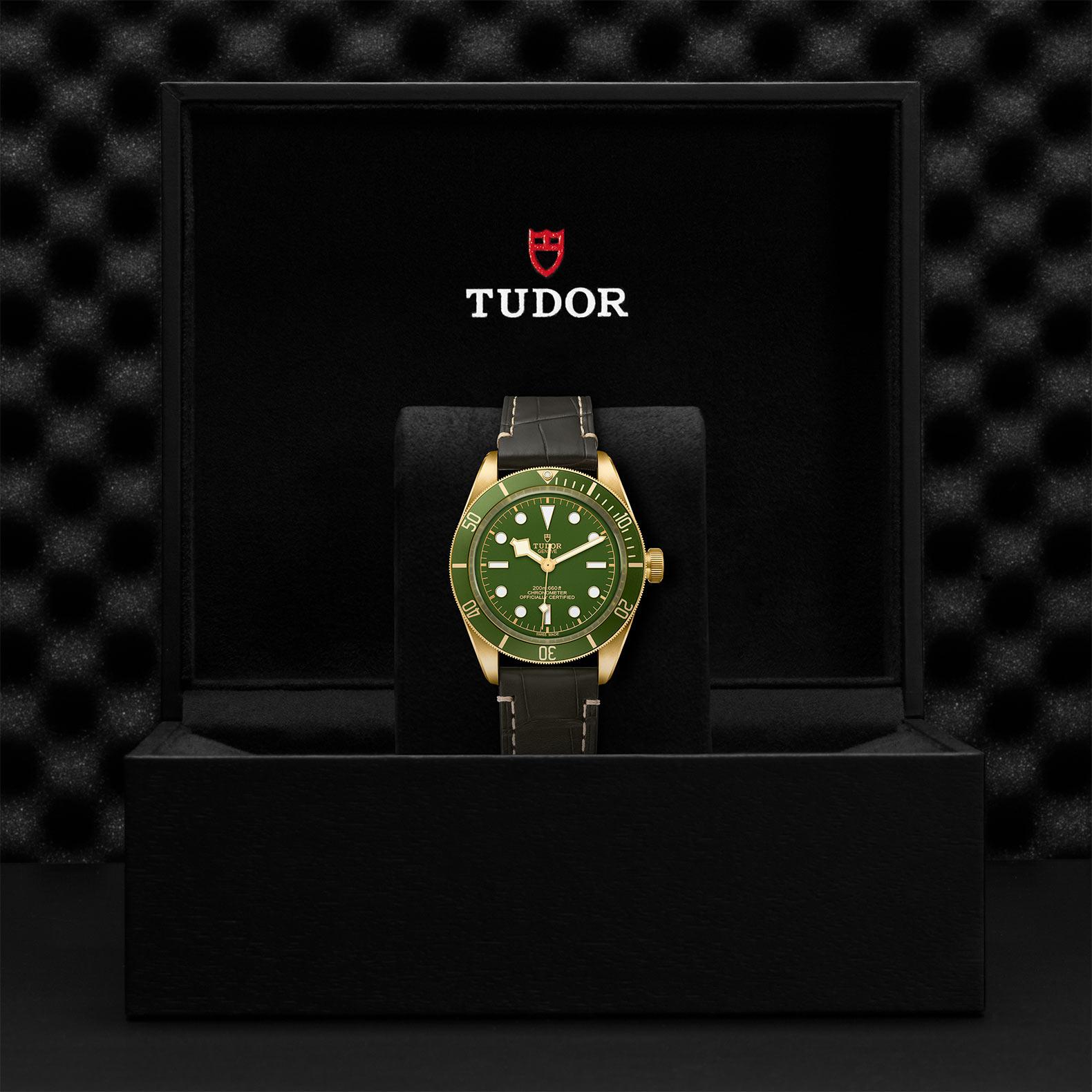 TUDOR Black Bay Fifty-Eight 18k - M79018V-0001