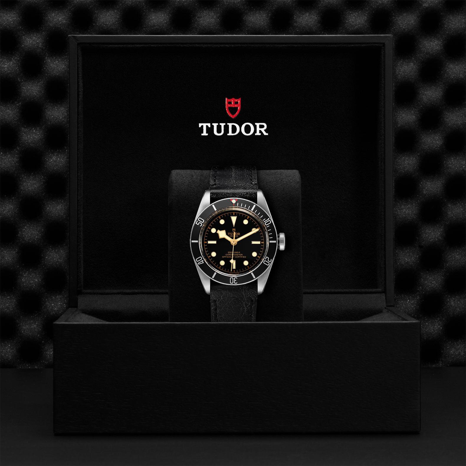 TUDOR Black Bay - M79230N-0008