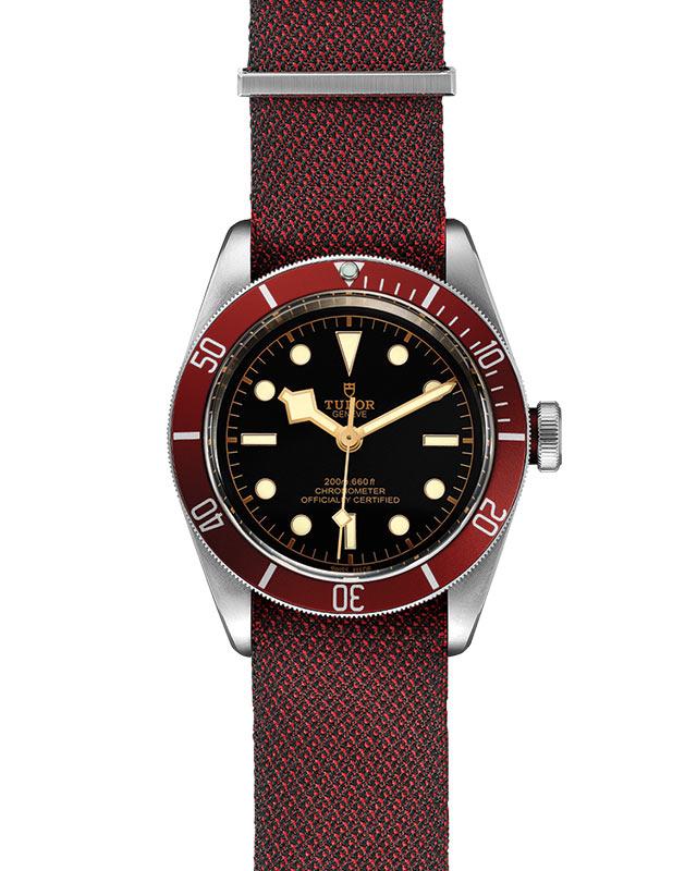 TUDOR Black Bay - M79230R-0009