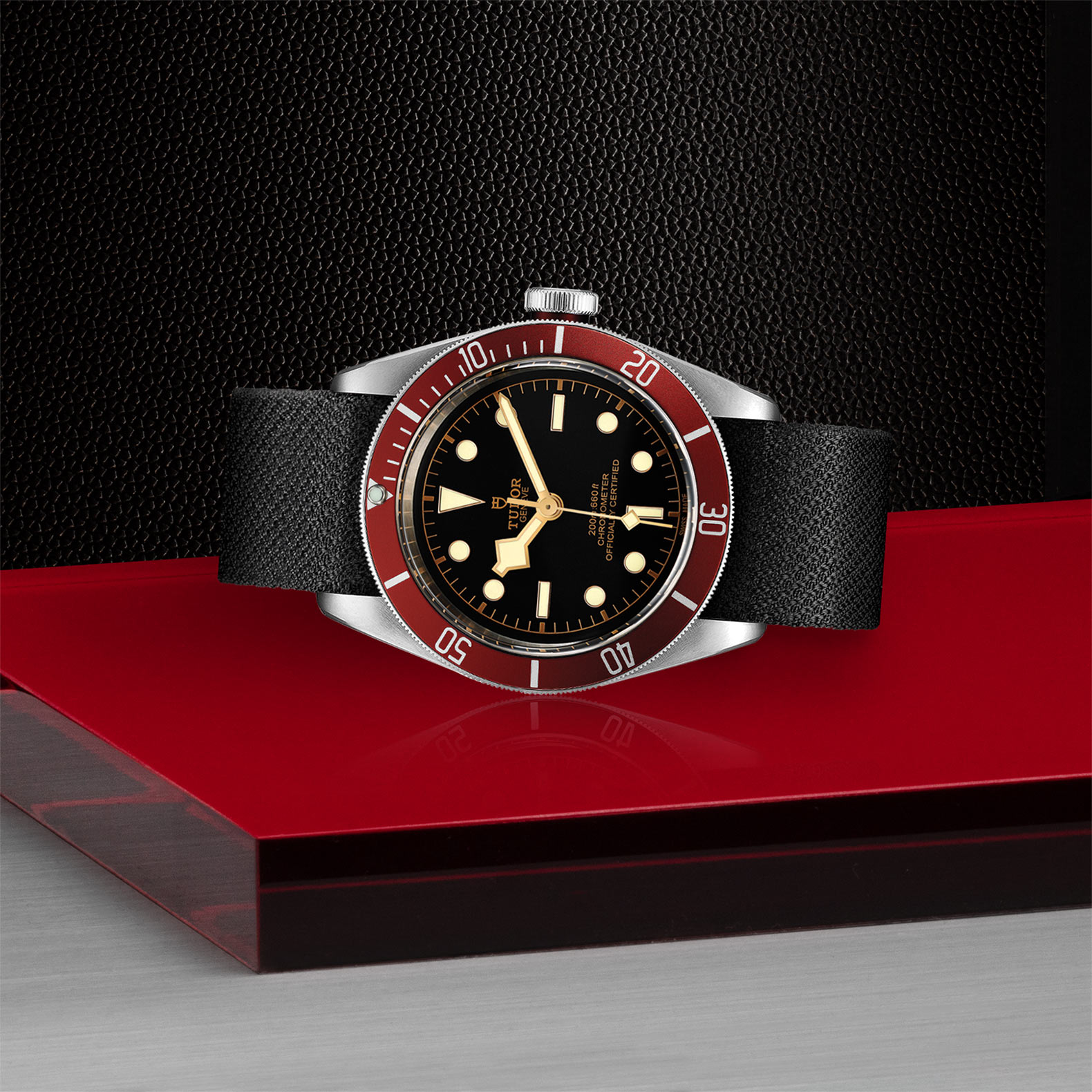 TUDOR Black Bay - M79230R-0010