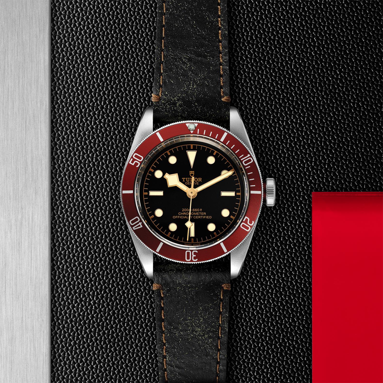 TUDOR Black Bay - M79230R-0011