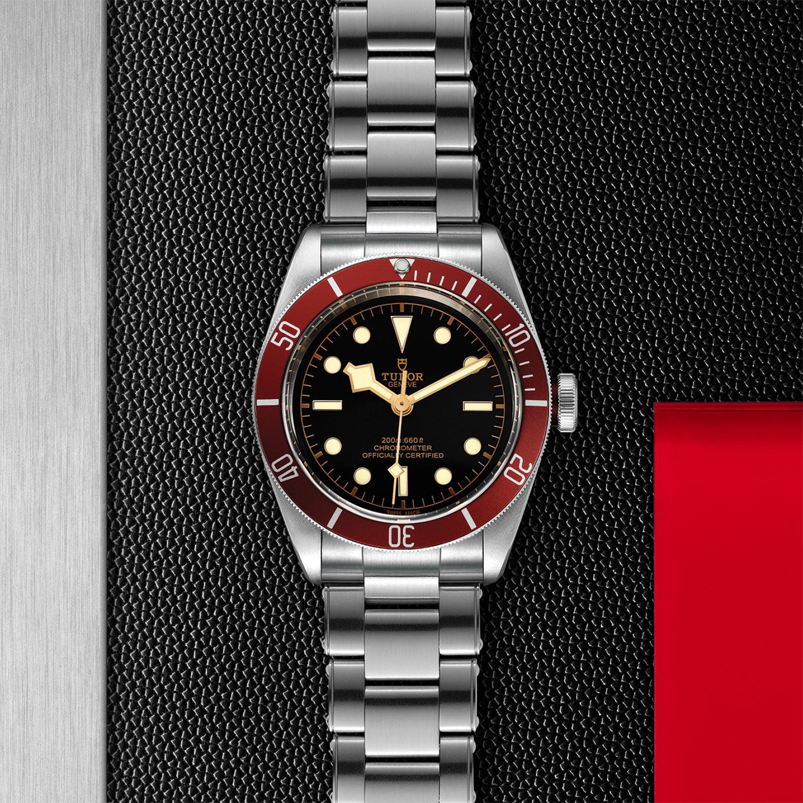 TUDOR Black Bay - M79230R-0012