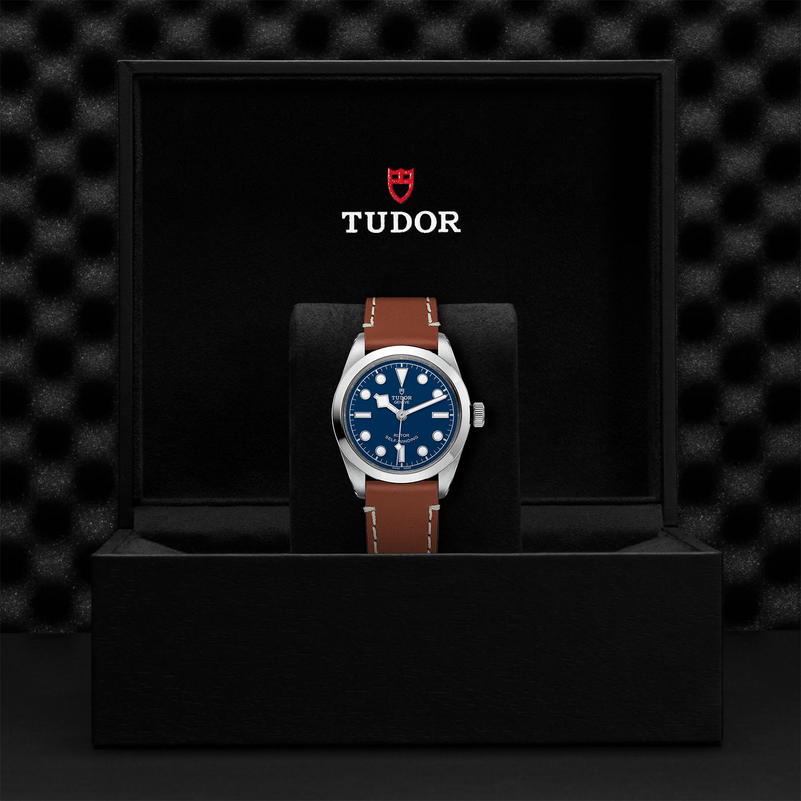 TUDOR Black Bay 36 - M79500-0006
