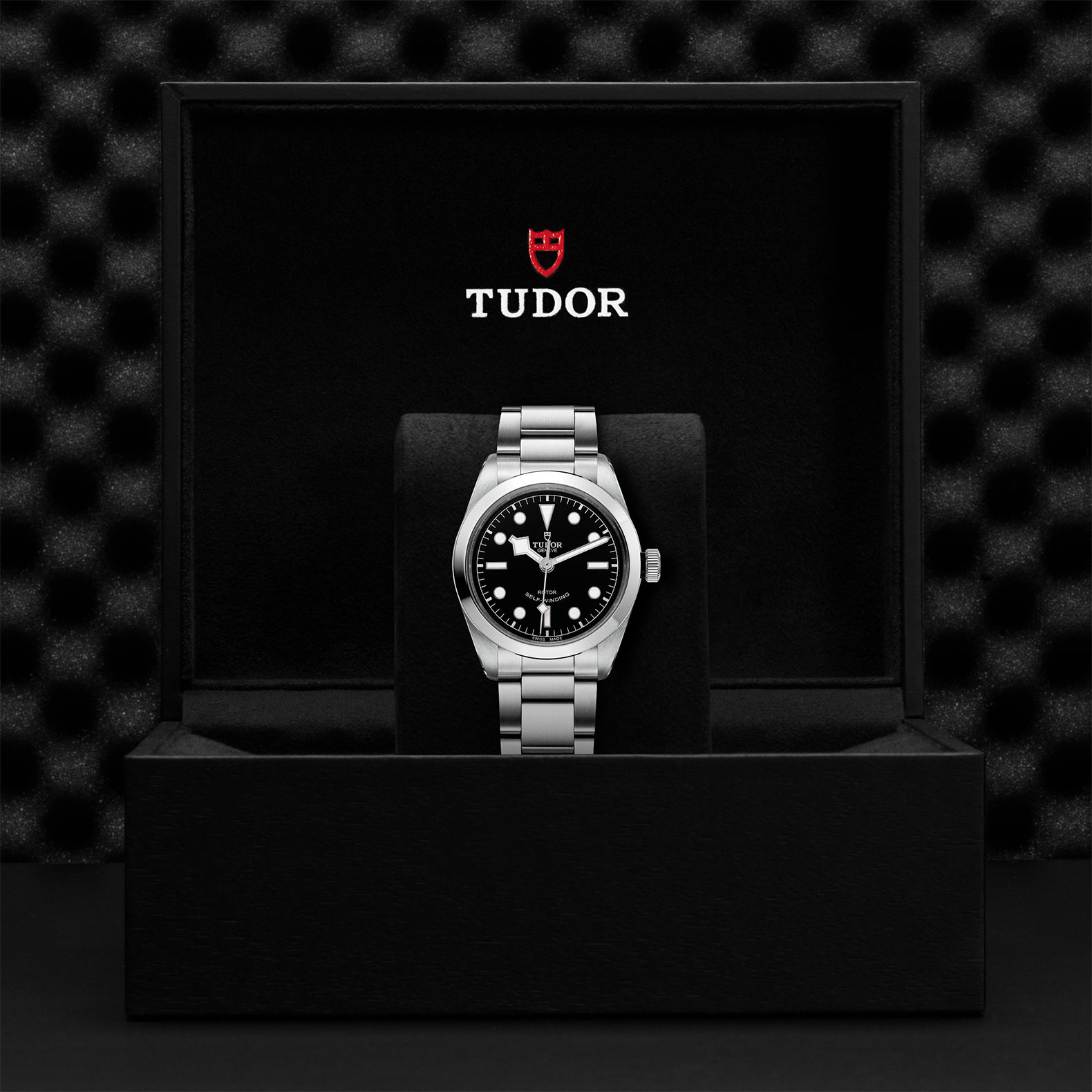 TUDOR Black Bay 36 - M79500-0007