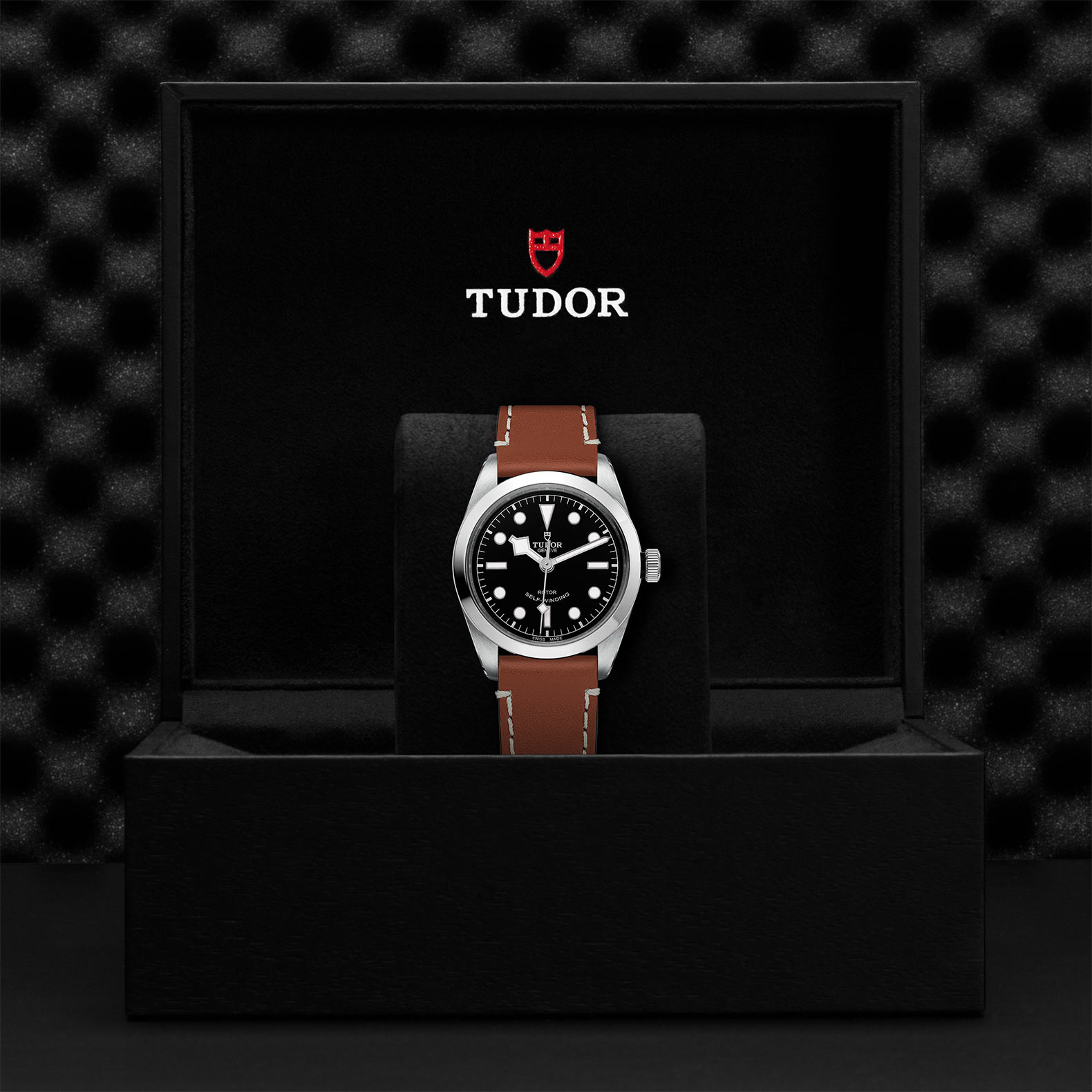 TUDOR Black Bay 36 - M79500-0009