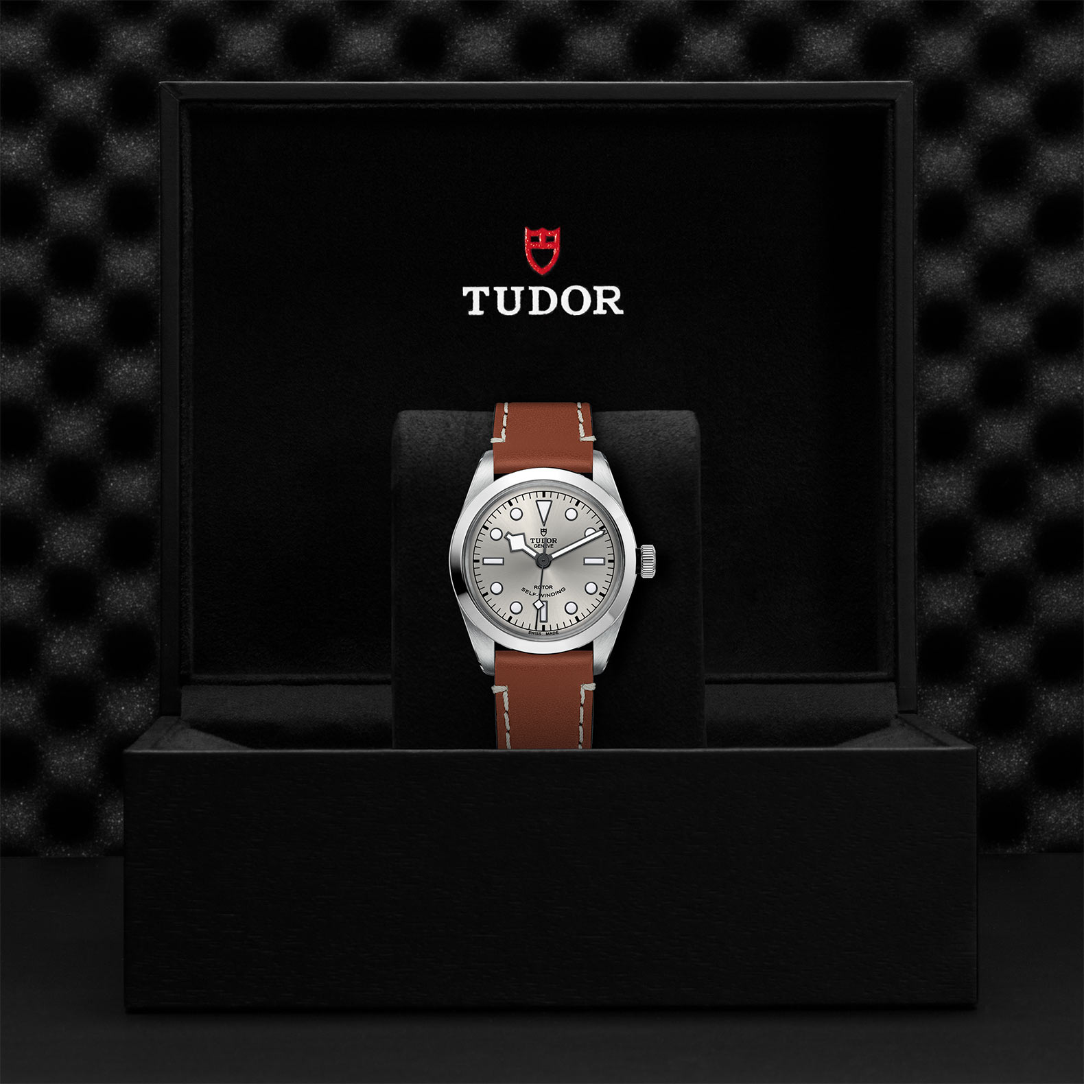 TUDOR Black Bay 36 - M79500-0016