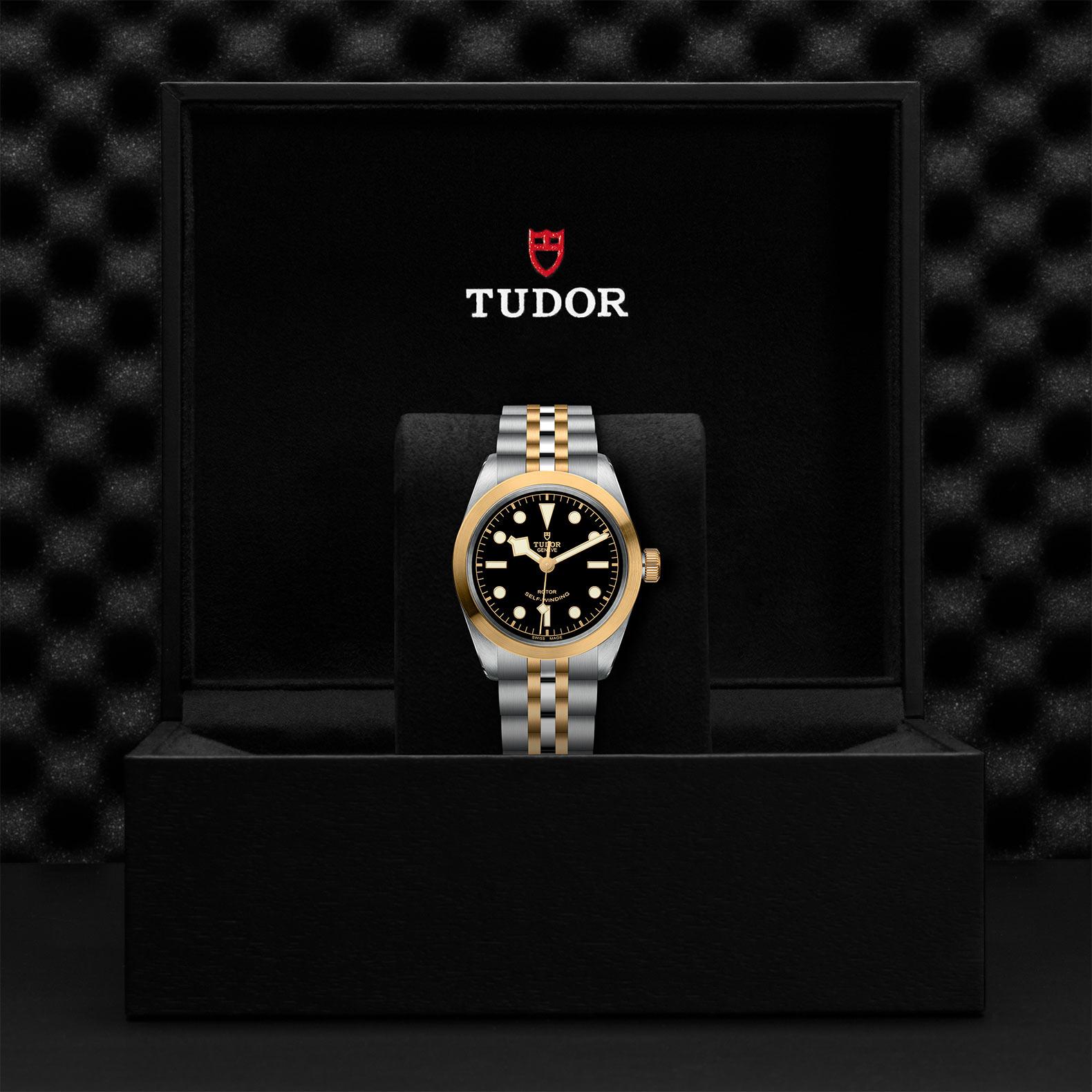 TUDOR Black Bay 36 S&G - M79503-0001