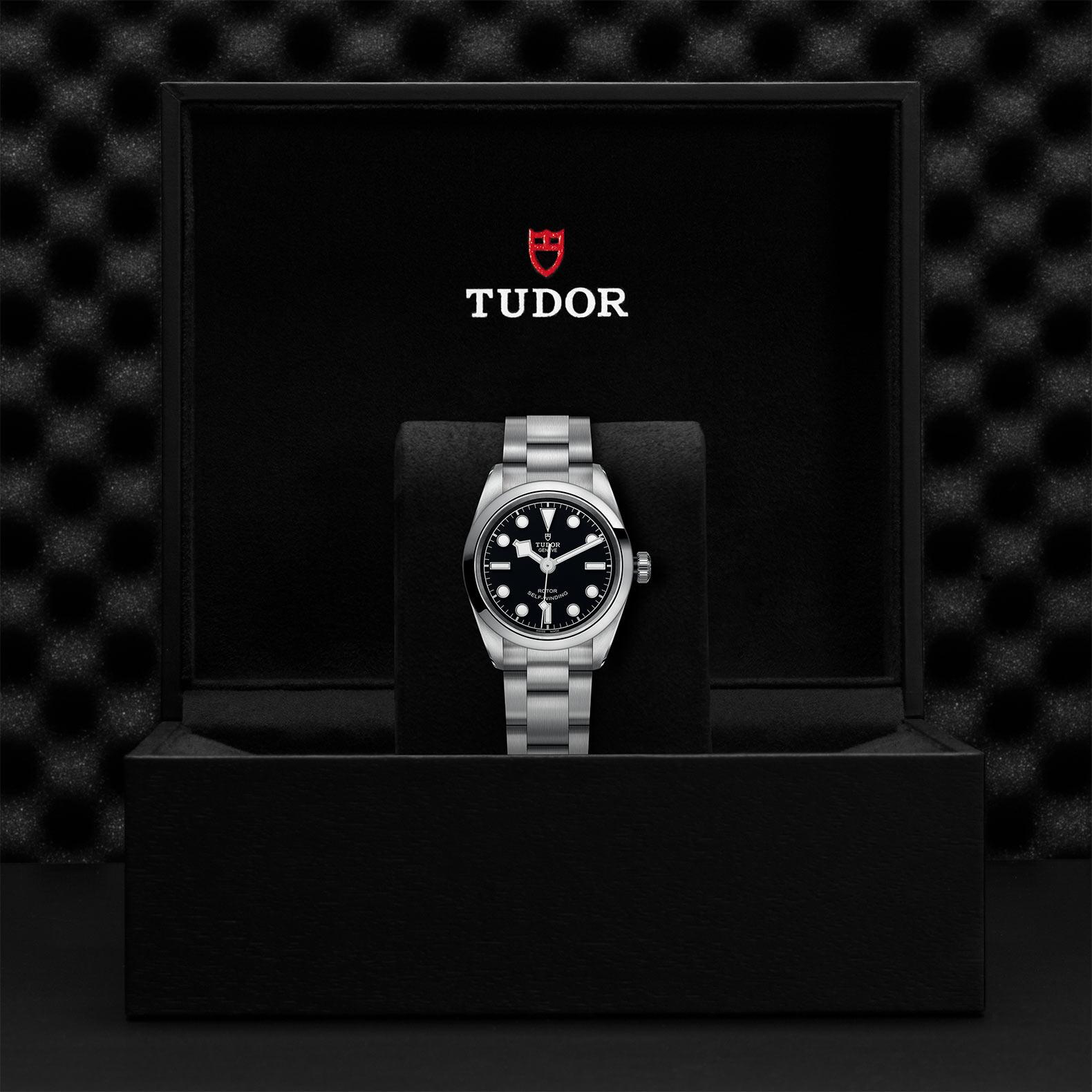 TUDOR Black Bay 32 - M79580-0001