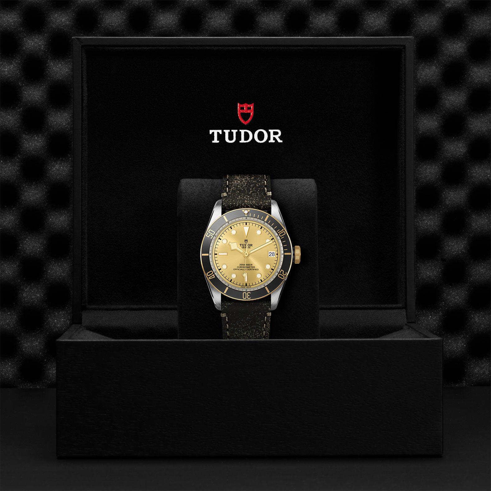 TUDOR Black Bay S&G - M79733N-0003