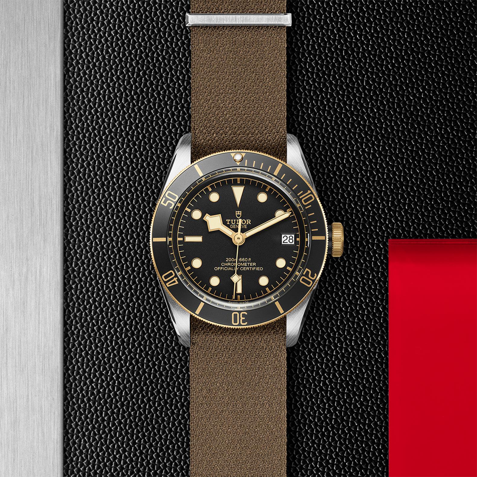 TUDOR Black Bay S&G - M79733N-0005