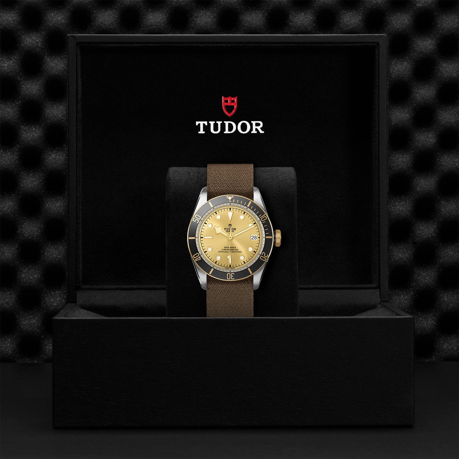 TUDOR Black Bay S&G - M79733N-0006