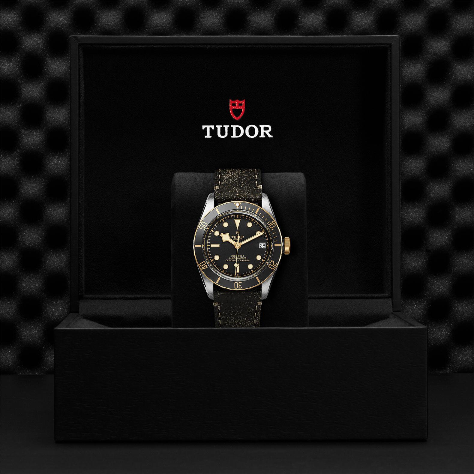 TUDOR Black Bay S&G - M79733N-0007