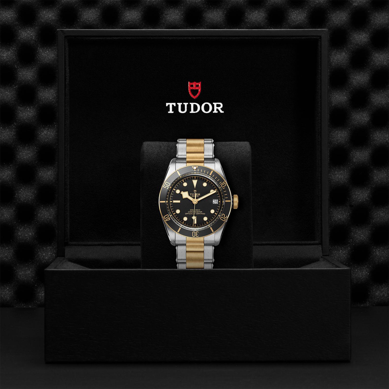 TUDOR Black Bay S&G - M79733N-0008